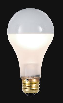 Standard A21 100W Bulb With Frosted Sides and Silver Reflector Top