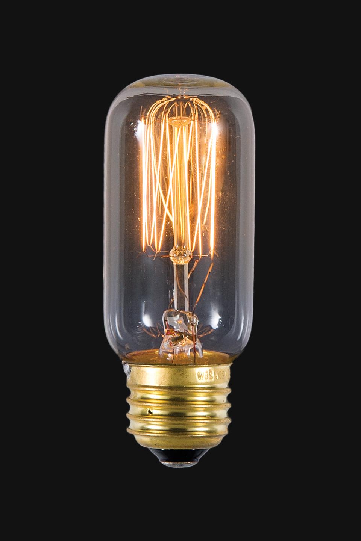 bulb - photo #5